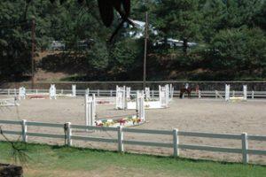 Horse_Park2