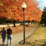 Sign Petition to Reduce Speed Limits around Chastain Park